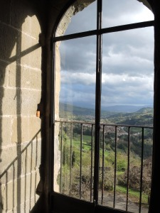 View from a castle window.