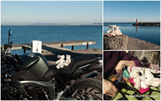 Clockwise from left: Algernon and Ilsa on the motorcycle; with the Étang de Thau in the background; and having wine with lunch.