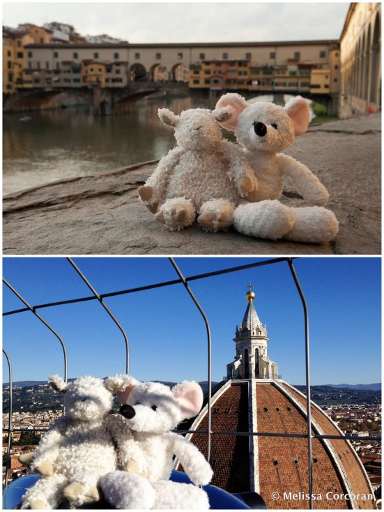 Top, Ilsa and Algernon with the Ponte Vecchio in the background. Bottom, on top of the Campanile di Giotto, with the dome of the Basilica di Santa Maria del Fiore in the background.