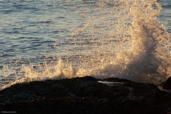 2012_01_01_Newport_0113