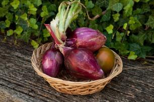 Sweet onions.