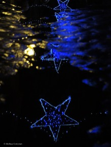 Holiday lights are reflected in a wet pavement.