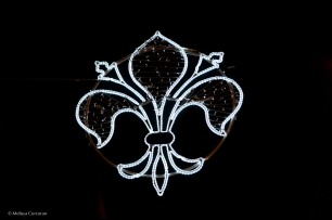 The symbol of Florence in lights.