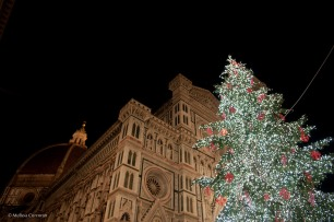 The Christmas tree in front of the Duomo.