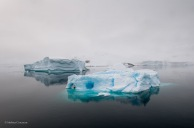 Sailing into the Antarctic. I hope I never forget how I felt this morning.