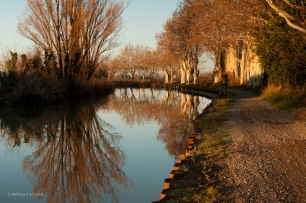 Walking the geocaching trail on the canal just before Christmas. The light and air were golden.